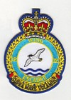 12 Wing badge