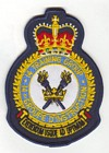 14 Training Group badge