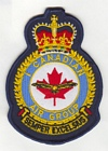 1 Canadian Air Group badge