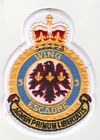 3 Wing badge