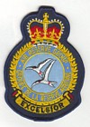 Air Reserve Group badge