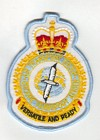 Air Transport Group badge
