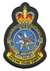 42 Wing badge