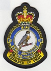 81 Wing badge
