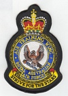 Air Training Wing badge