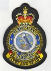 Air Command badge