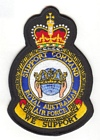 Support Command badge